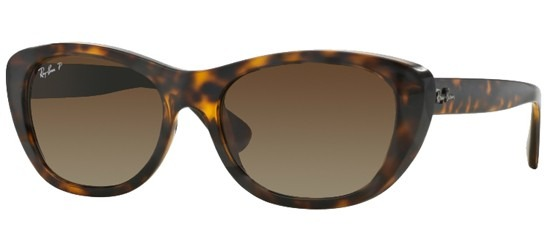 Ray-Ban Highstreet RB 4227 710/T5